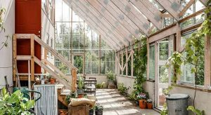 Home Greenhouse