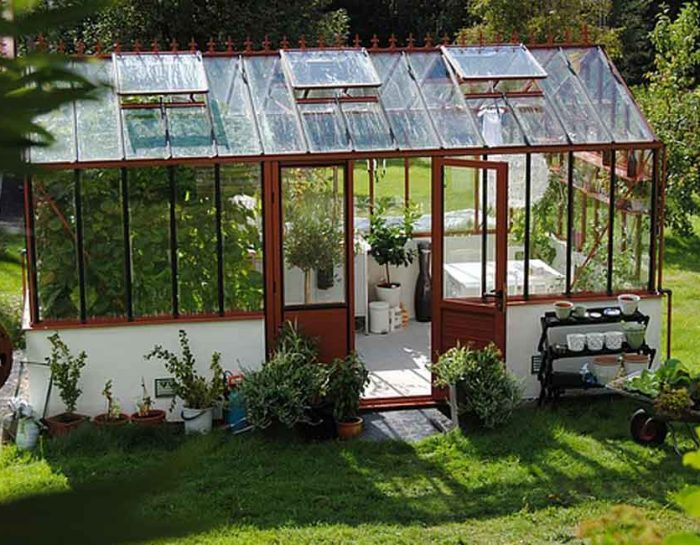 How Greenhouse Climates Work in the Growth of Plants