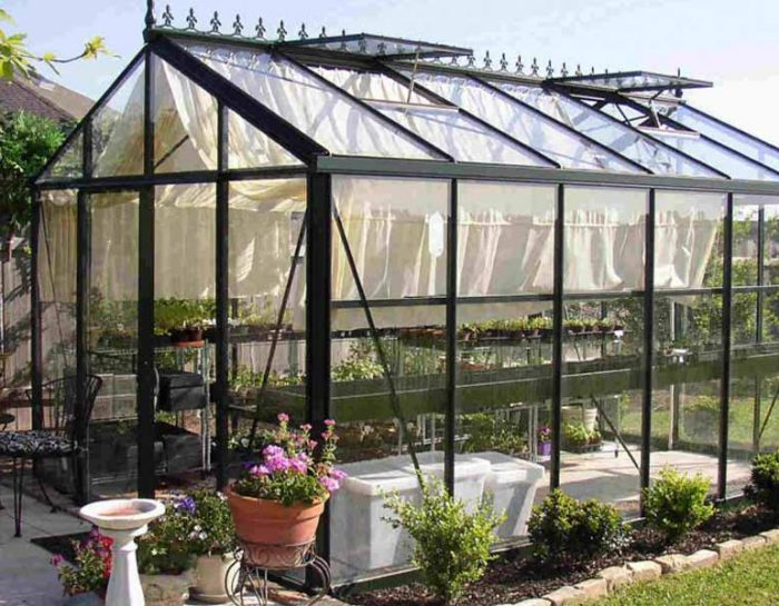 Building an Easy and Cost-effective Greenhouse on Your Back Yard