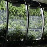 Choosing the Right Greenhouse Design