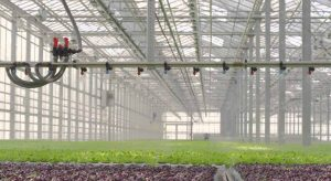 Greenhouse Humidification