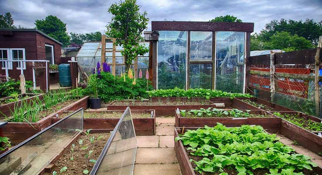 Hoop House Greenhouse