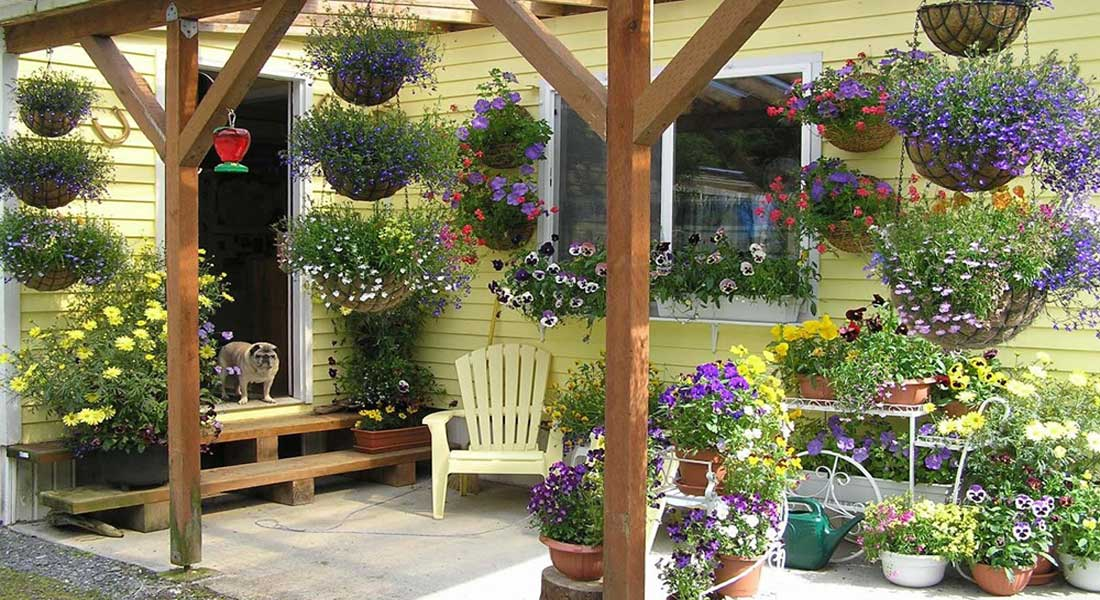 How to Create a Private Outdoor Sanctuary | Greenhouse ...