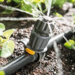 Ensuring You Have the Perfect Irrigation System for Your Yard